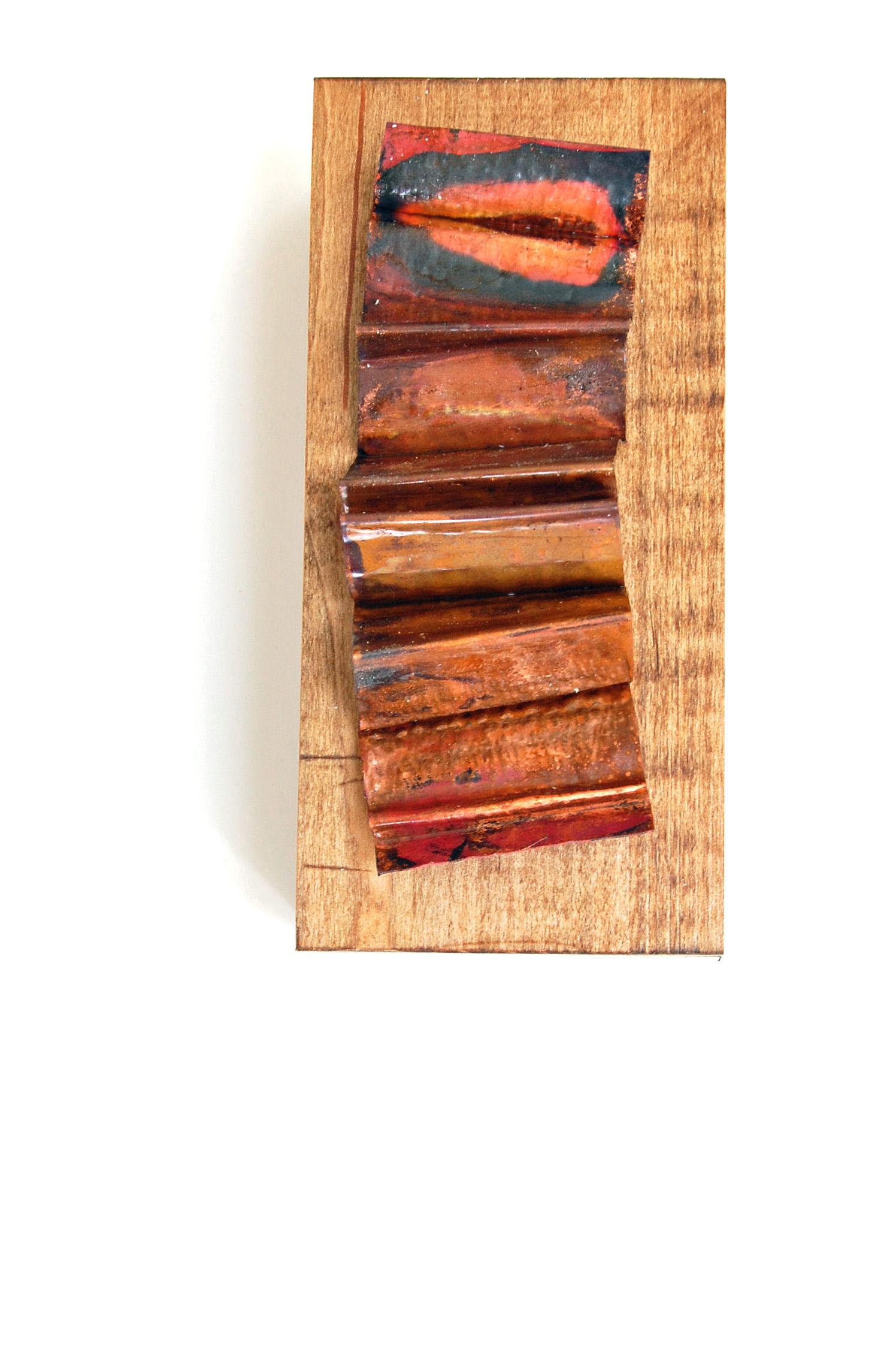 folf copper_0087
